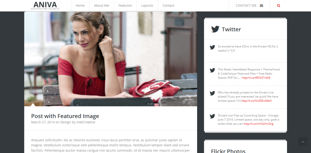 Blogging WordPress Themes
