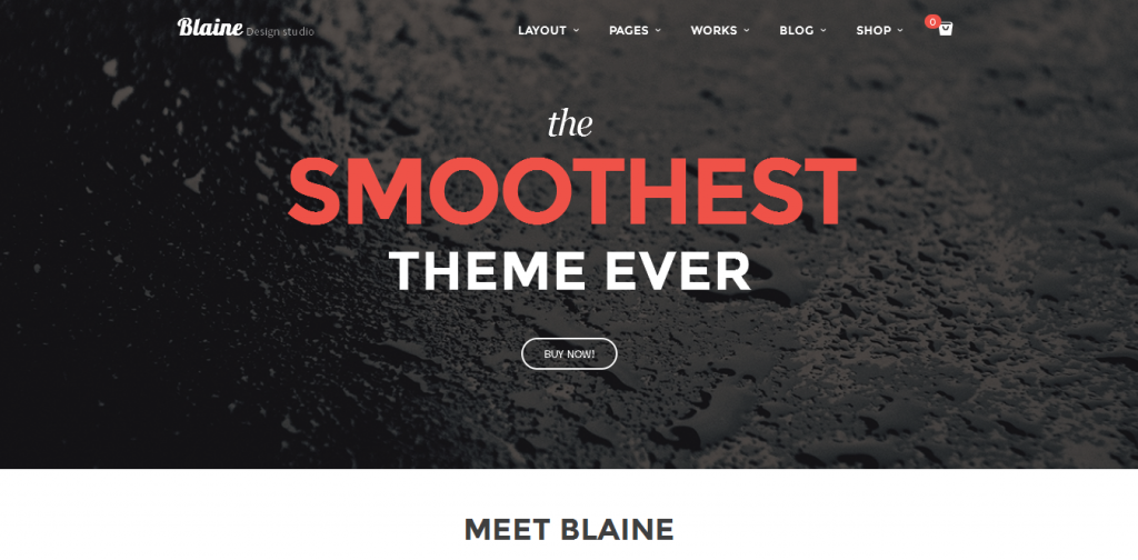 Creative Portfolio WordPress Themes