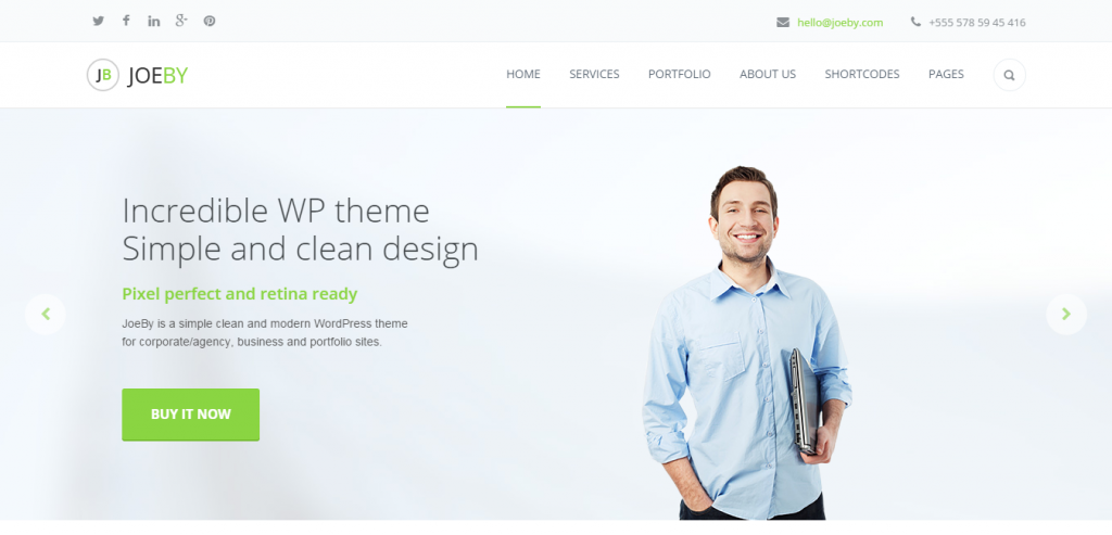 Download Business WordPress Themes