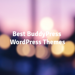 Best-BuddyPress-Themes
