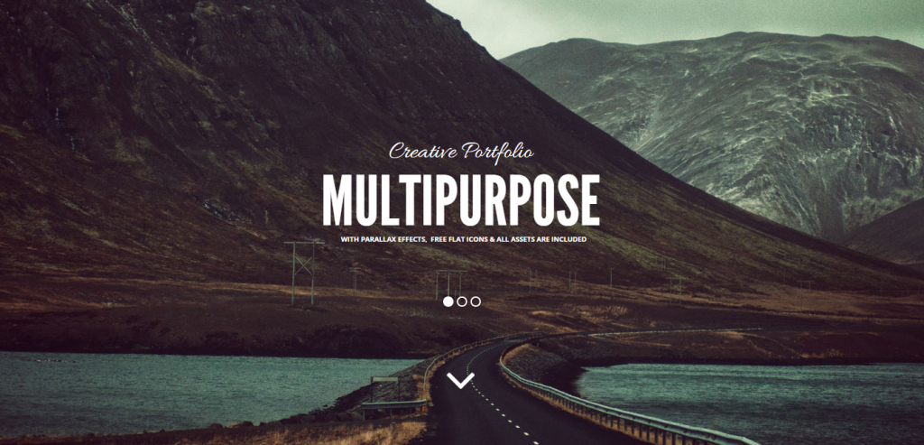 Buy Adobe Muse Templates