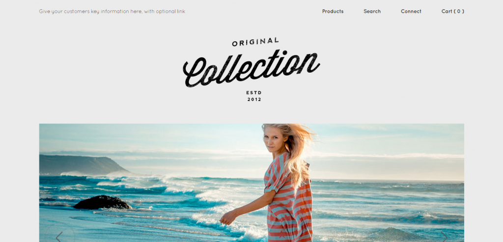 Top Shopify WordPress Themes