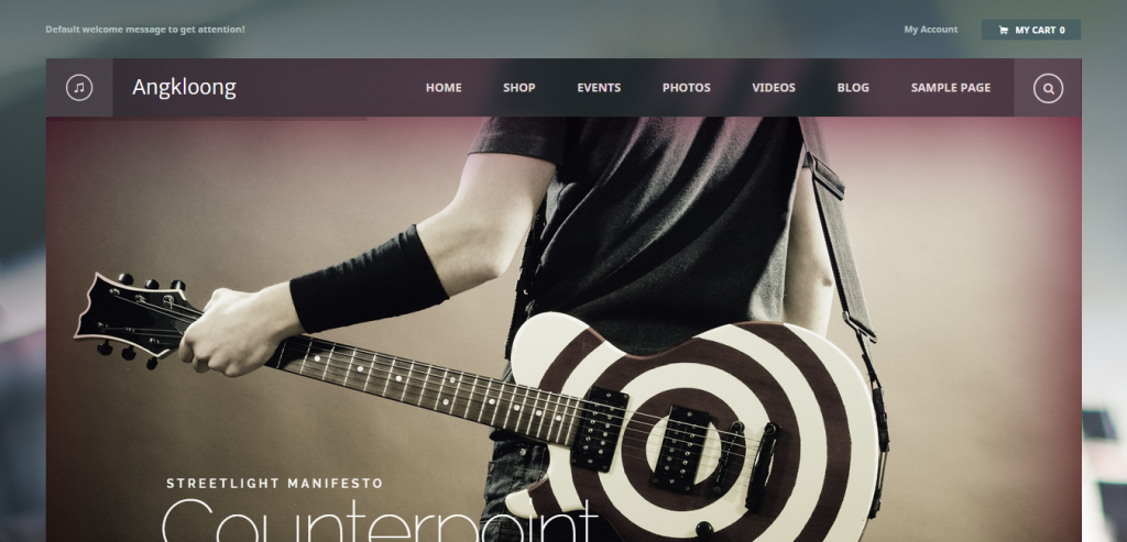 Best Music WordPress Templates