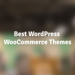 Best-WordPress-WooCommerce-Themes