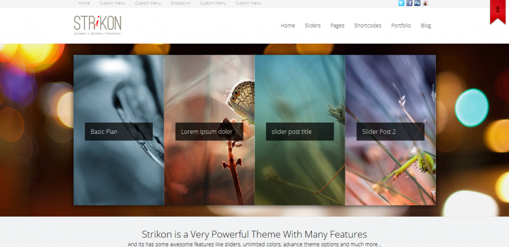 Buy Hosting WordPress Theme