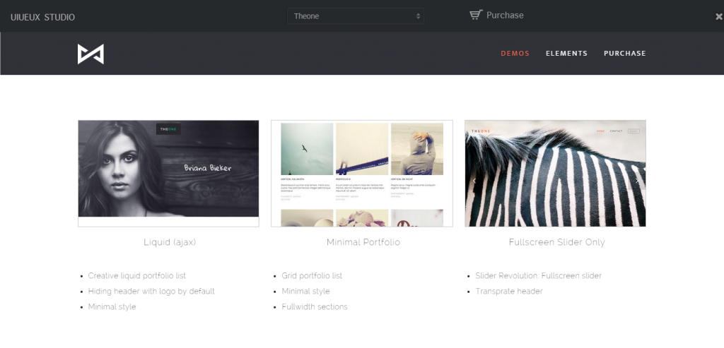 Downlaod Portfolio WordPress Templates