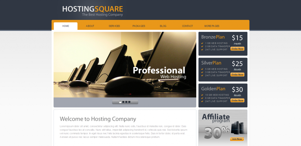 Hosting WordPress Theme