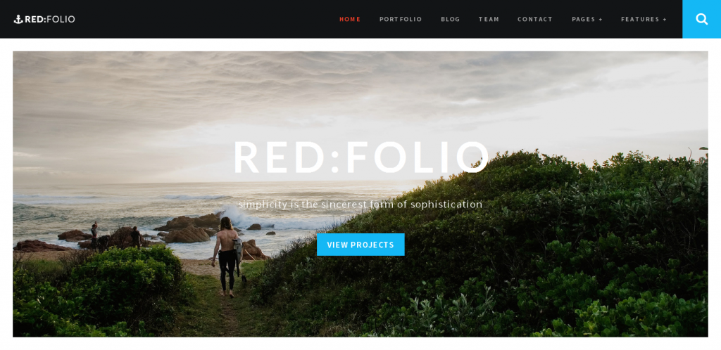 One Page Portfolio WordPress Theme