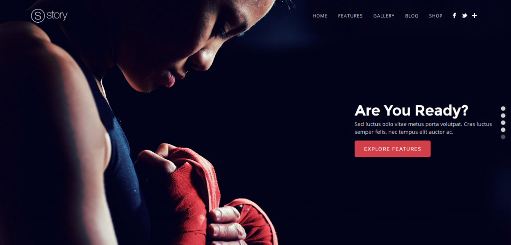 Parallax Portfolio WordPress Themes