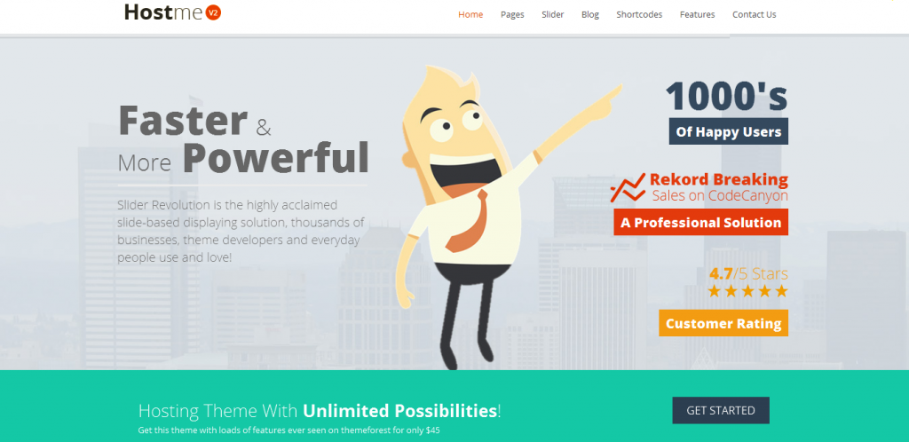 Premium Hosting WordPress Themes