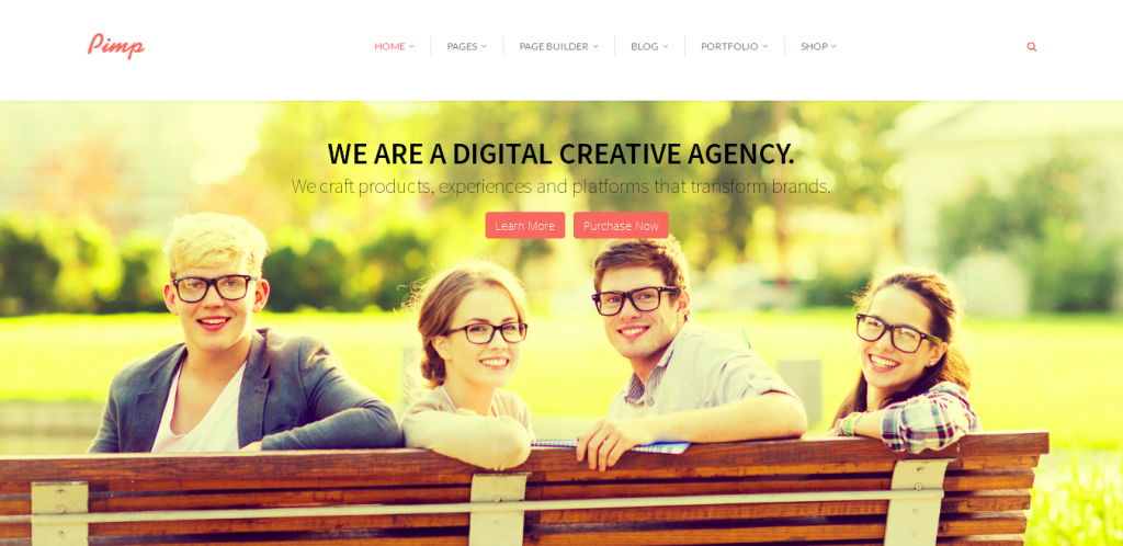 Premium Portfolio WordPress Themes