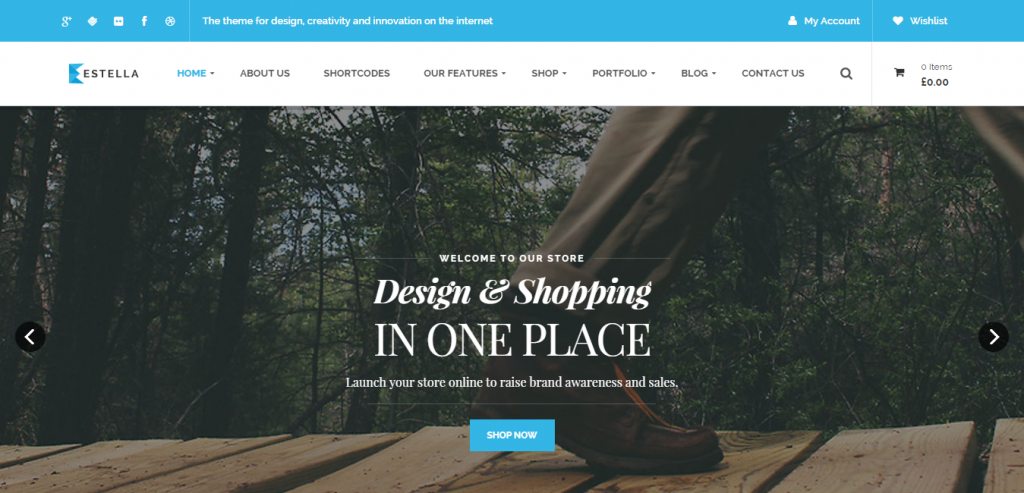 Top WordPress Commerce Templates