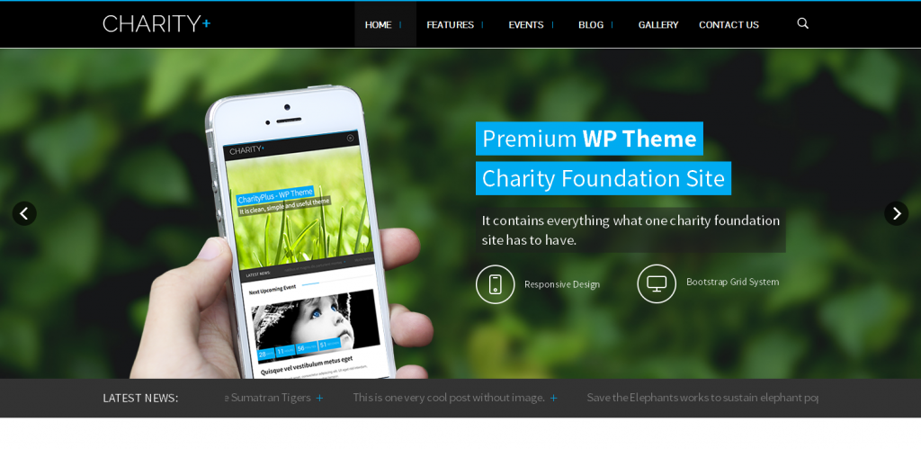 Best Non Profit WordPress Themes