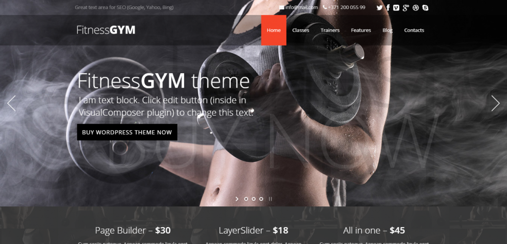 Best Sport and Fitness WordPress Theme