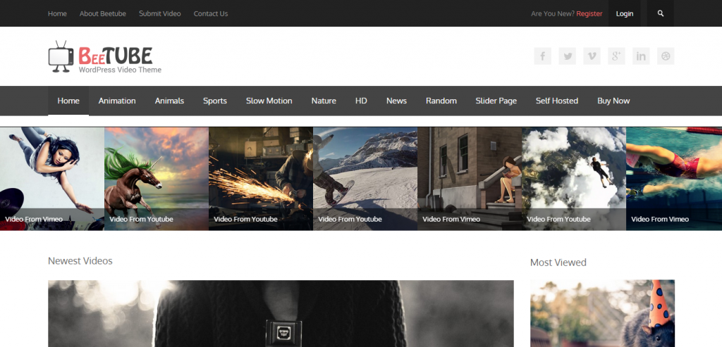 Best Video WordPress Themes