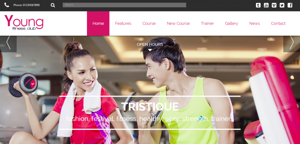 Buy Sport and Fitness WordPress Theme