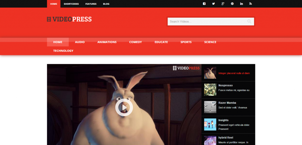 Buy Video WordPress Theme