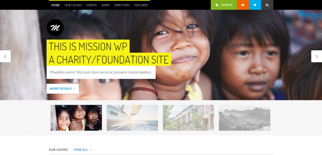 Charity Theme WordPress