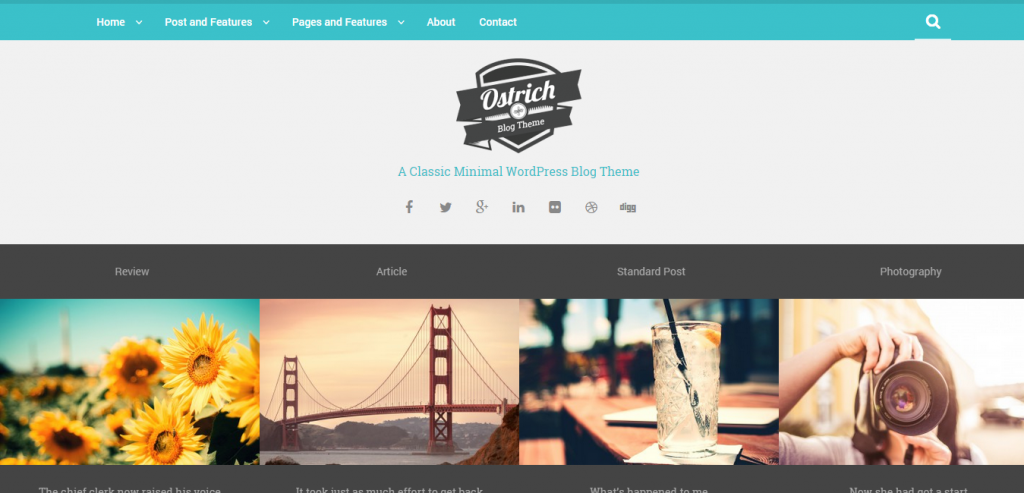 Best Magazine WordPress Themes