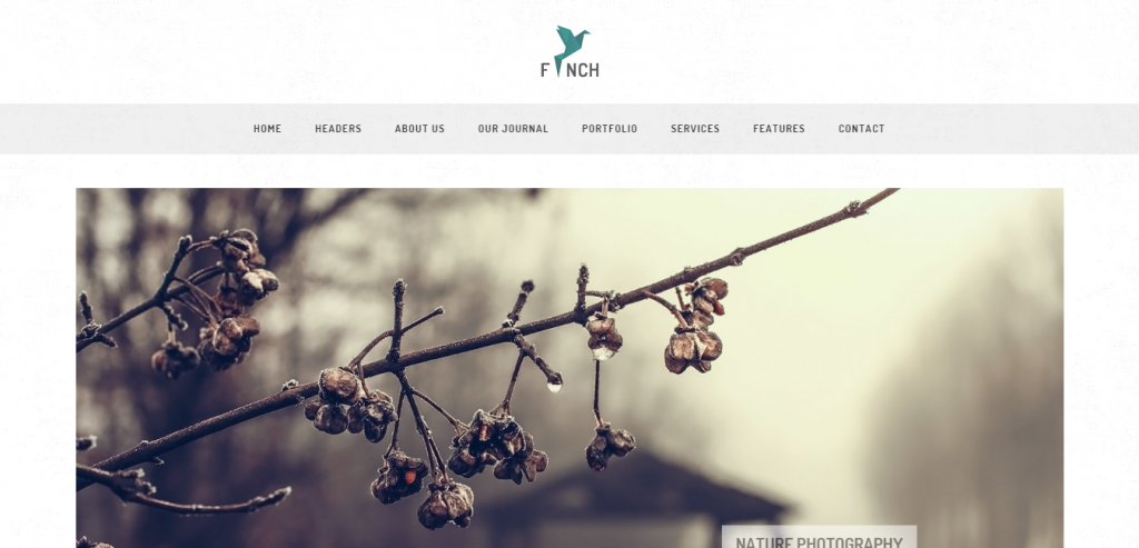 Buy Photography HTML Templates