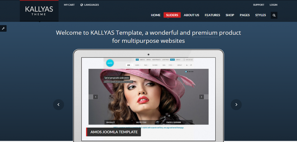 Download WordPress Multipurpose Theme