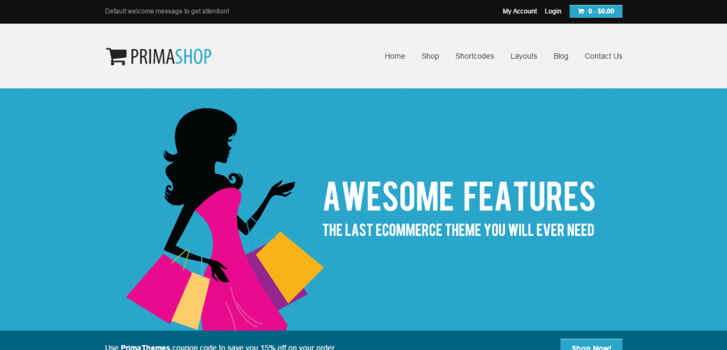 Premium WP e-Commerce Themes