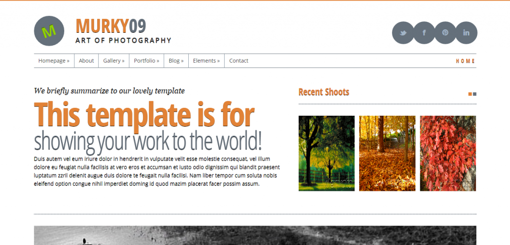 Top HTML Photography Templates
