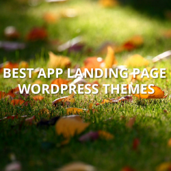 app-landing-page-wordpress-themes