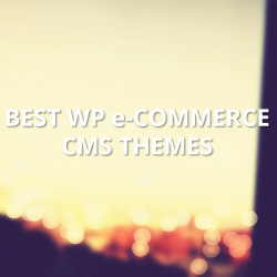 wp-e-commerce-cms-themes