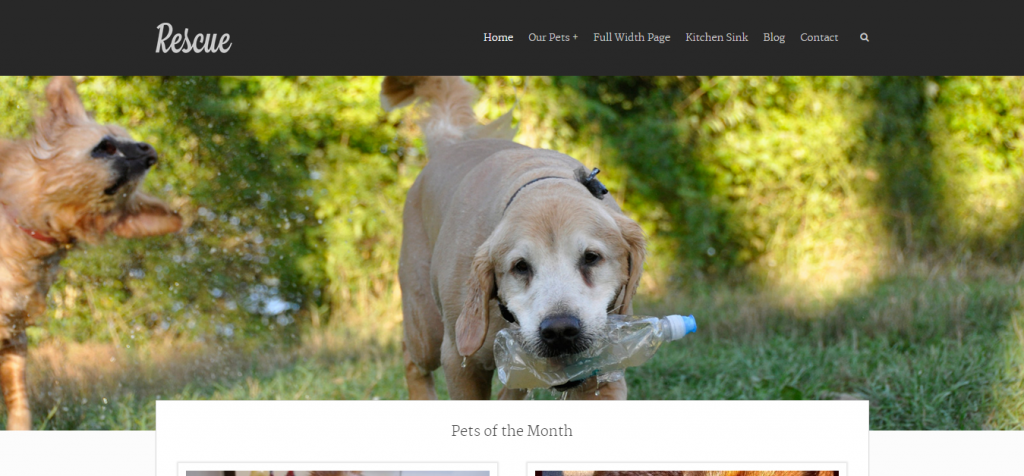 Buy Pet Animal WordPress Themes