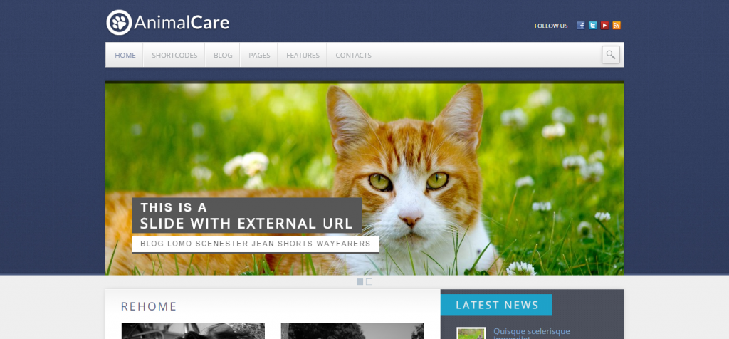 New Pet Animal WordPress Themes