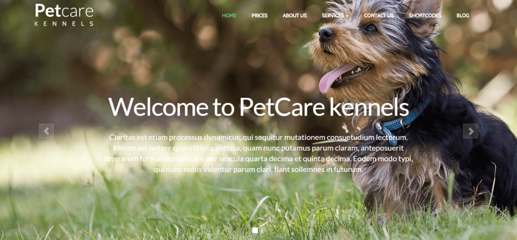 Premium Pet Animal WordPress Themes