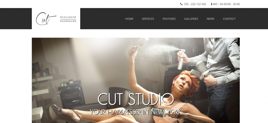WordPress Theme for Hair Salons