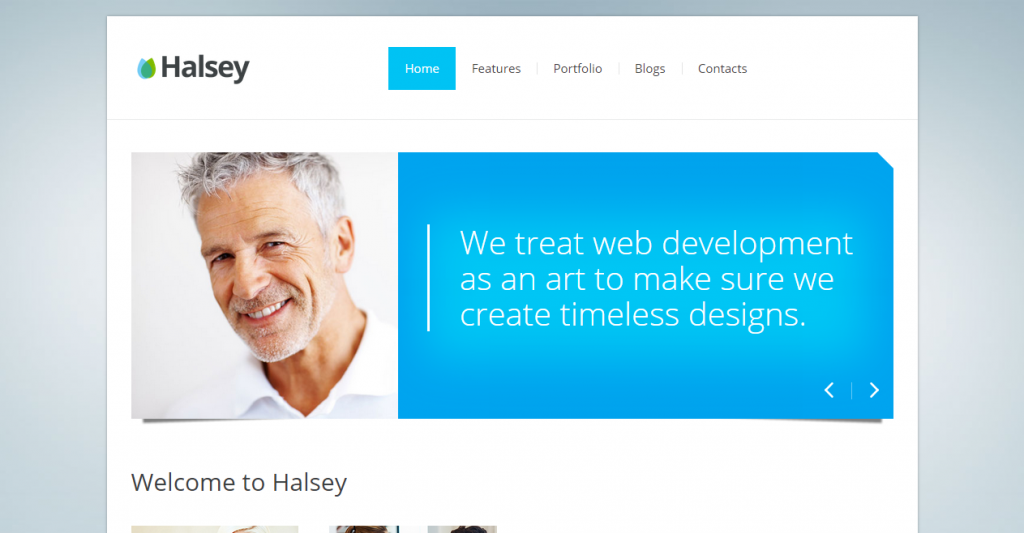 Halsey Premium corporate template