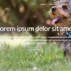 Pet Animal HTML Templates