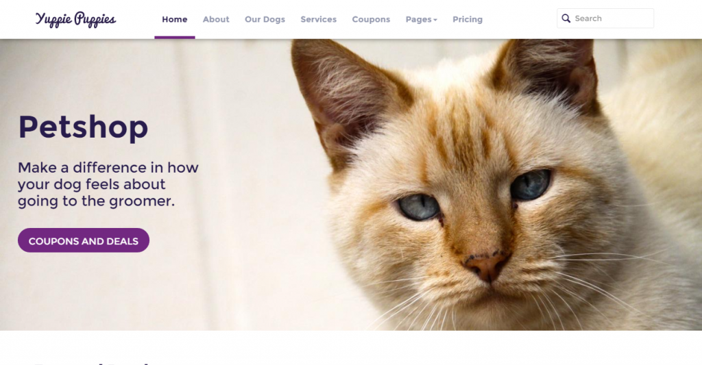 Petshop Responsive Pet Friendly Theme