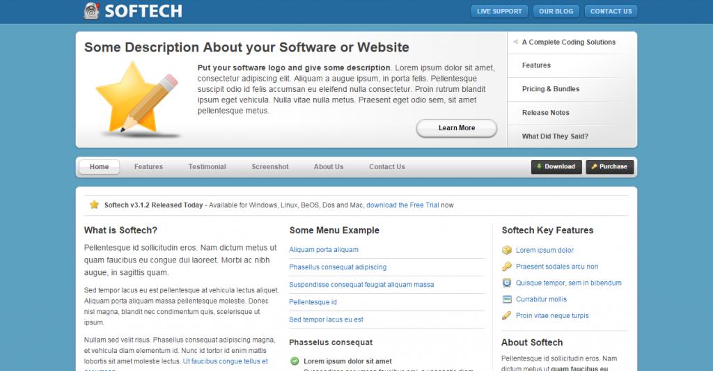 Softech Software and Hosting Template