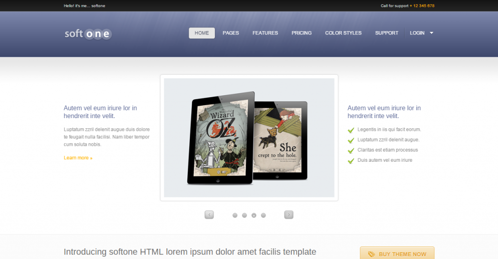 Softone Software App HTML Template