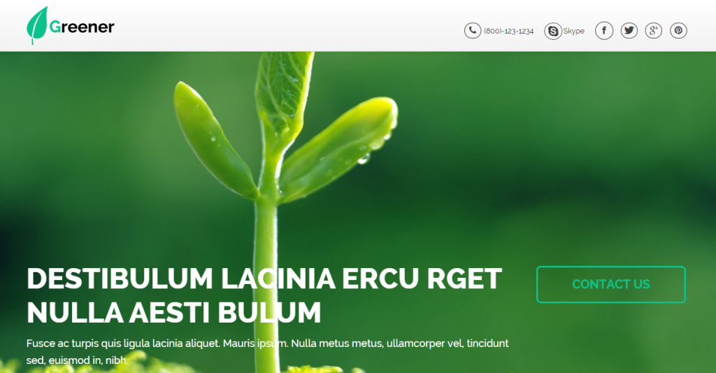 Greener Nonprofit OnePage Template