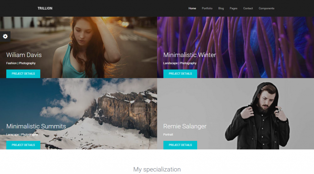 TRILLION Premium MultiPurpose HTML5 Template