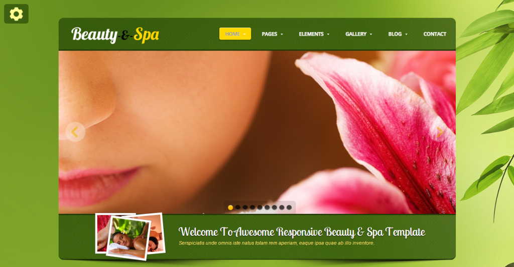 Beauty-spa Responsive website template