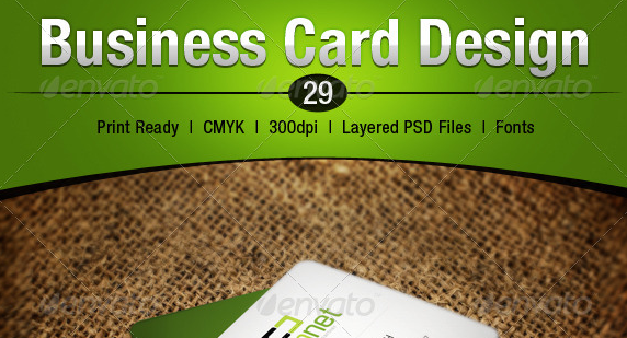 Business Card Design 29
