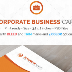 Business Card PSD Templates