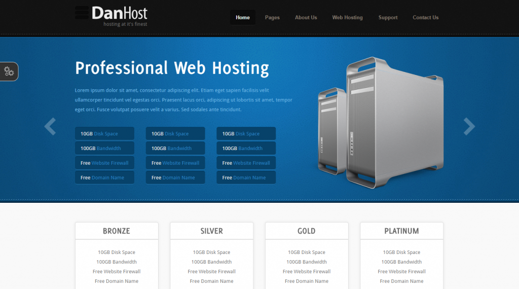 DanHost Hosting Template