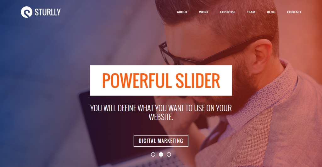 Sturlly Responsive One Page Multi-Purpose Template