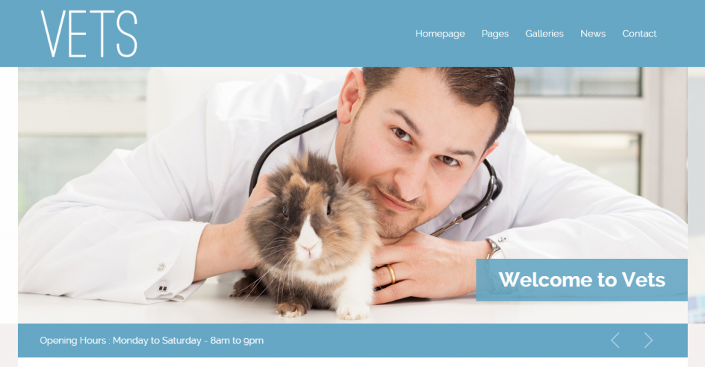 VETS Veterinary Medical Health Clinic Template