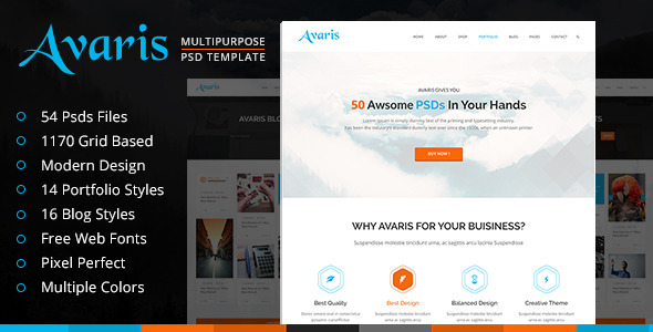 Avaris Multipurpose PSD Template