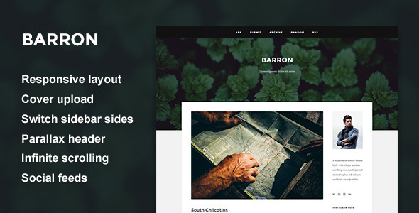 Barron Content Focus Tumblr Theme