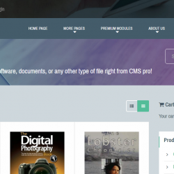 DigiShop Module for CMS pro