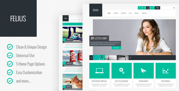 Felius Multipurpose PSD Template